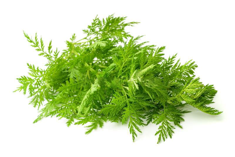 Herbacross | Сладък пелин Artemisinin